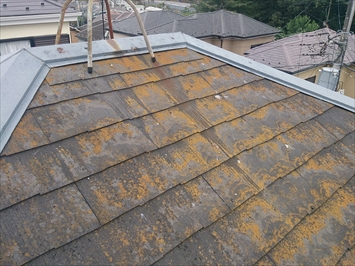 小金井市前原町でコケが付着したスレート屋根を屋根塗装工事で綺麗にします