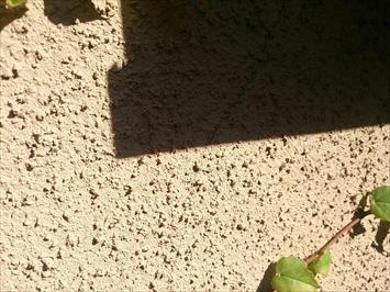 ひび割れが出ている外壁