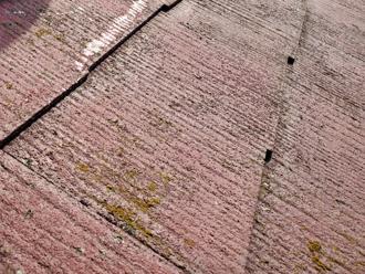 苔が発生し、塗膜が劣化したスレート