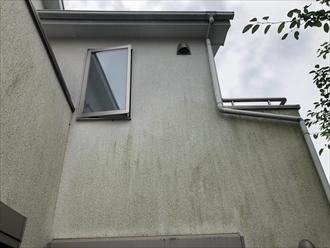 外壁に苔が生えています