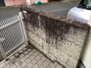 苔の生えた玄関前の門