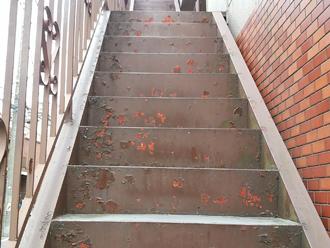 塗膜剥離によって錆びが生じた鉄骨階段