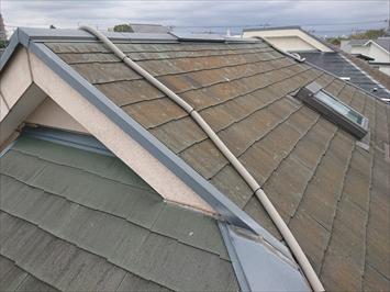 コケが付着したスレート屋根
