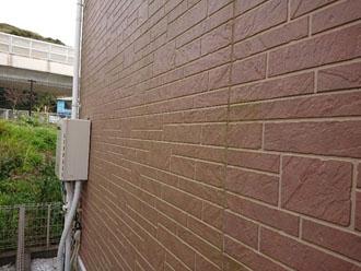 窯業系サイディング外壁には薄っすらと藻が発生しています