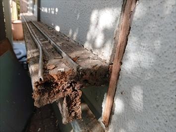 木枠を外すと敷居が腐食していました