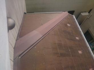 1階屋根に苔が発生