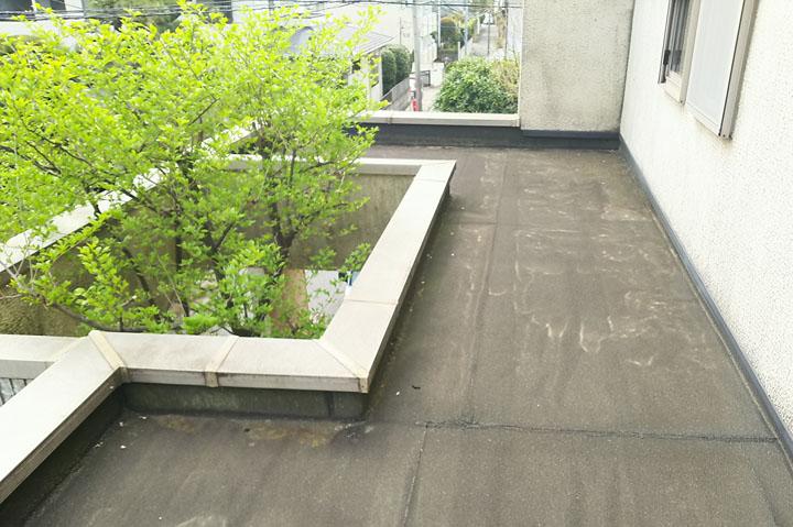 植物を意識した空間