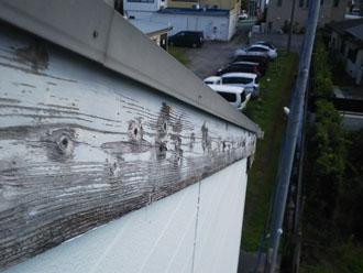 水墨画のような破風板