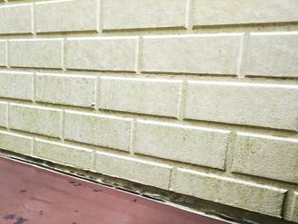 苔や藻が繁殖した外壁