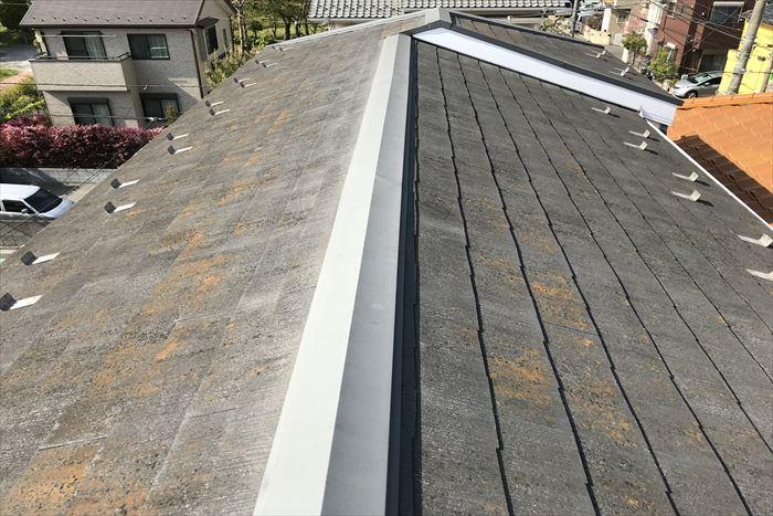 屋根が変色。お手入れ時期です。