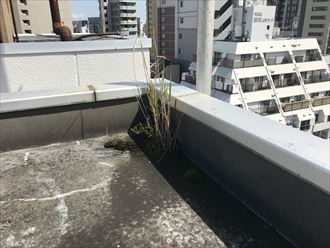 千代田区外神田で屋上防水のご相談、現地調査を行いました