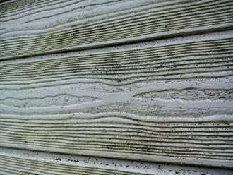 汚れと藻の繁殖