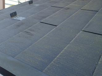 1階屋根には藻が繁殖
