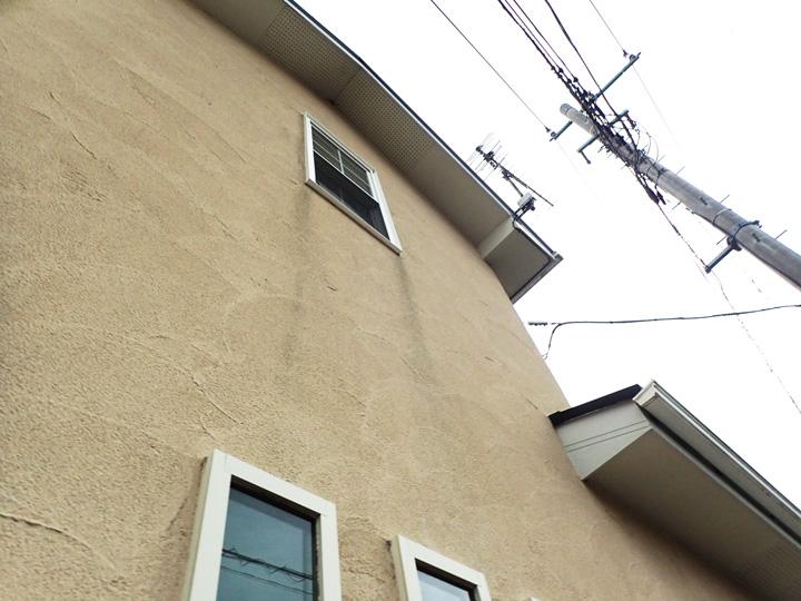 カビが発生した外壁