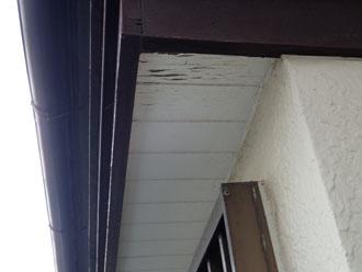 軒天の塗膜劣化に伴う傷み