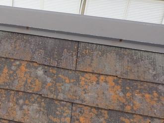 釘が抜け錆が出ている棟板金