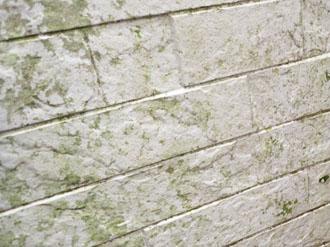 北側外壁の劣化