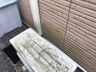 コケの発生した外壁
