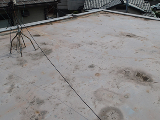陸屋根の様子