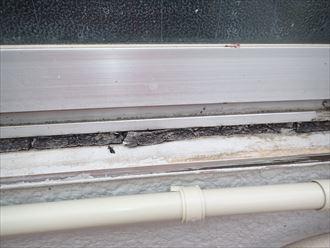 江戸川区窓周りと天井の雨漏り