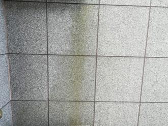 外壁には藻が発生