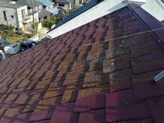 アーバニー屋根に破損症状は見られませんが、汚れが目立つ様子です