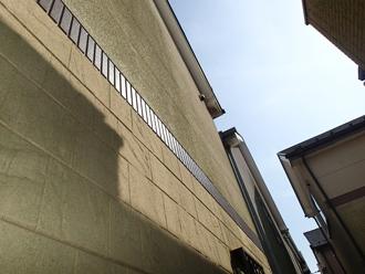 葛飾区_外壁に苔の発生