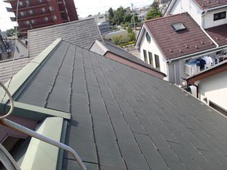 葛飾区_パミール屋根に苔の発生