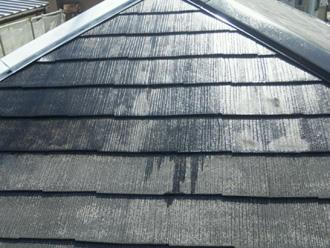 江戸川区 屋根塗装 プライマー塗布