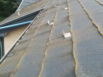 スレートの下端か藻で編者くしている屋根