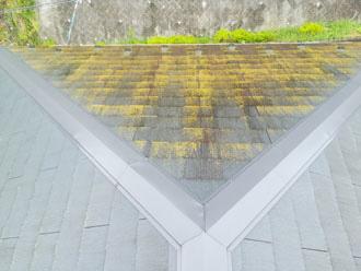 藻が激しく生えている屋根