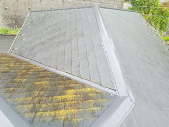 特定の面に限って藻が激しく生えている屋根