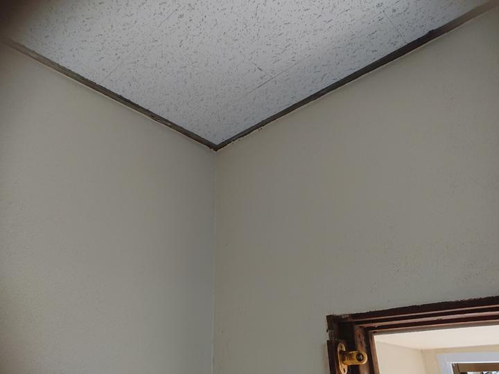 内壁塗装、完了