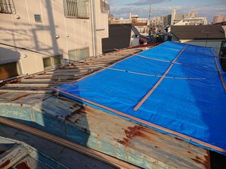 養生していた屋根